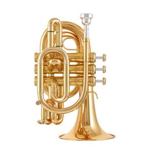 """Take the """"IS IT GOOD FOR ME"""" test for """"Kühnl & Hoyer Pocket G Bb-Trumpet"""", read the reviews and join the community!"""