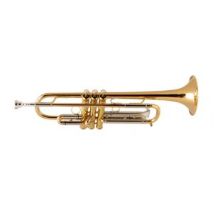Is Kühnl & Hoyer Spirit RL Bb-Trumpet lacque a good match for you?