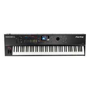Is Kurzweil Forte 88 a good match for you?