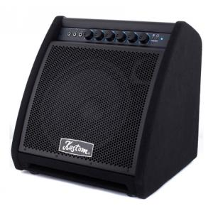 Is Kustom KDA200 Drum Monitor a good match for you?