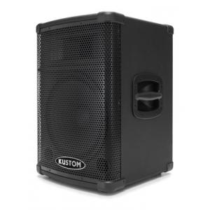 Is Kustom PA2X12 a good match for you?