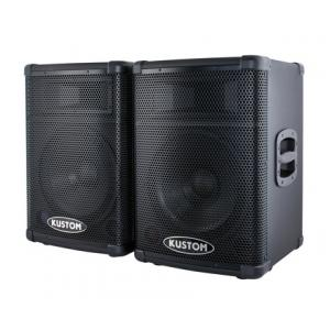 Is Kustom PA2X12 B-Stock a good match for you?