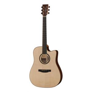 Is Lakewood D-31 CP a good match for you?