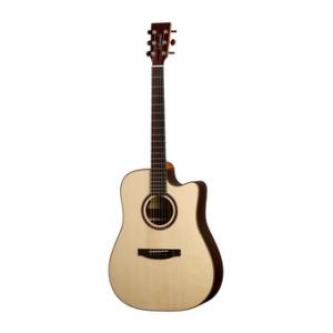 Is Lakewood D-31 CP 2012 a good match for you?