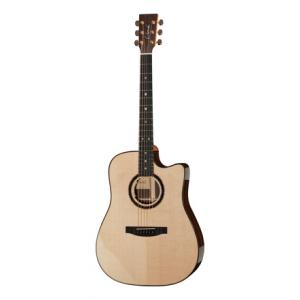 Is Lakewood D-32 CP a good match for you?