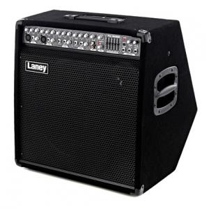 Is Laney AH300 a good match for you?