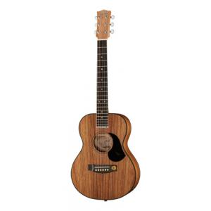 Is Maton EMBW6 Mini a good match for you?