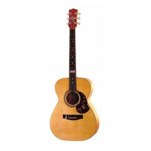 Is Maton T.E.Personal 808 Custom Shop a good match for you?