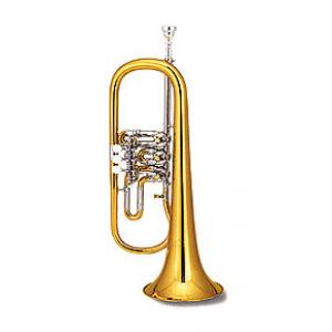 Is Miraphone 24R 0700 A Flugelhorn B-Stock a good match for you?