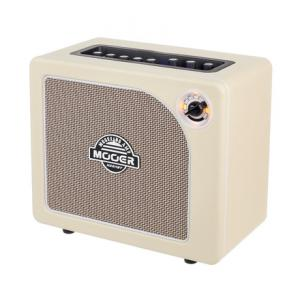 Is Mooer Hornet Modelling Combo WH a good match for you?