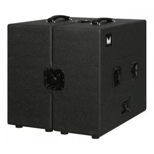 Is Morgan Amplification Chameleon Isolation Cab a good match for you?