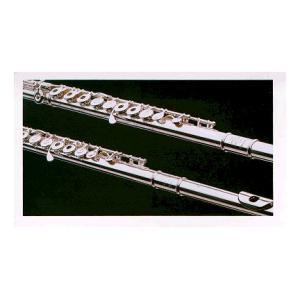 Is Muramatsu GX-RBE Flute Ringklappen a good match for you?