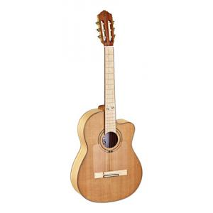 Is Ortega RCE179SN-25TH Guitar a good match for you?