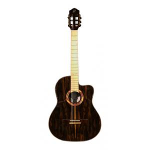 Is Ortega RCE2019SN-25TH Guitar B-Stock a good match for you?