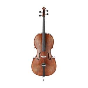 Is Otto Jos. Klier Cello 4/4 No. 10 a good match for you?