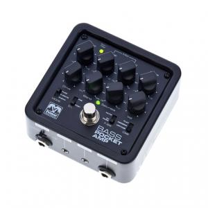 Is Palmer Pocket Amp Bass a good match for you?