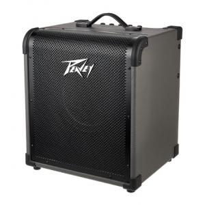 Is Peavey Max 100 a good match for you?