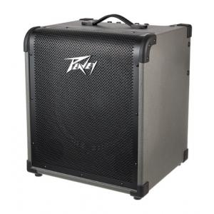 Is Peavey Max 150 a good match for you?