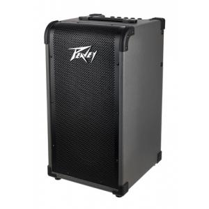 Is Peavey Max 208 a good match for you?