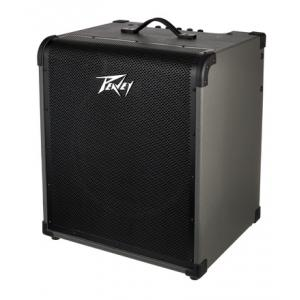 Is Peavey Max 250 a good match for you?