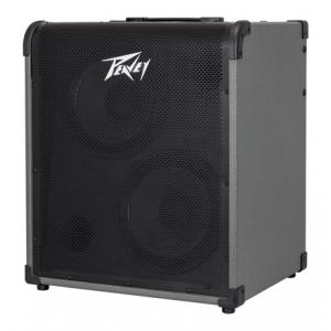 Is Peavey Max 300 a good match for you?