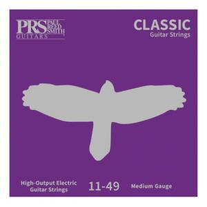 Is PRS ACC-3103 Classic Str. 011-049 a good match for you?