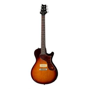 Is PRS SE One TS Ltd a good match for you?