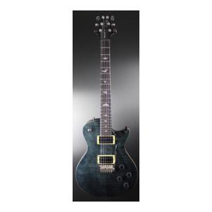 """Take the """"IS IT GOOD FOR ME"""" test for """"PRS SE Tremonti Custom GB Ebony"""", read the reviews and join the community!"""