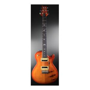 """Take the """"IS IT GOOD FOR ME"""" test for """"PRS SE Tremonti Custom VS Ebony"""", read the reviews and join the community!"""