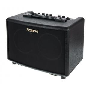 "Take the ""IS IT GOOD FOR ME"" test for ""Roland AC-33"", read the reviews and join the community!"