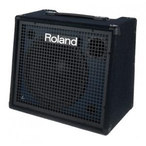 Is Roland KC-200 a good match for you?