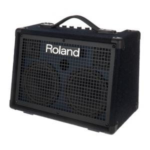 Is Roland KC-220 a good match for you?