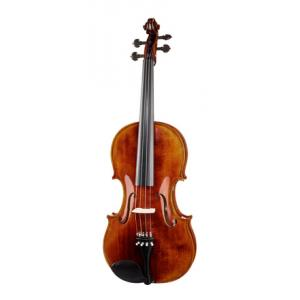 Is Roth & Junius Europe Antique Pro Viola 16,5' a good match for you?