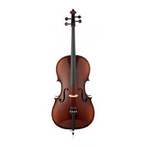 Is Roth & Junius RJCE 4/4 Student Cello Set a good match for you?