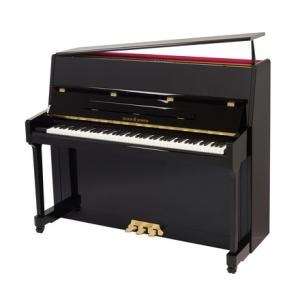 Is Roth & Junius RJP 118 E/P Piano a good match for you?