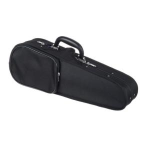 Is Roth & Junius RJVC Violin Hardcase 1/16 a good match for you?