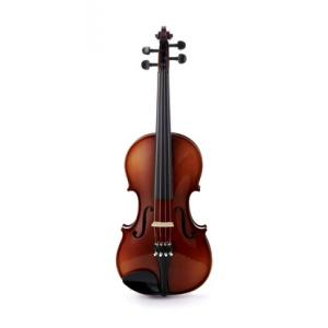 """Take the """"IS IT GOOD FOR ME"""" test for """"Roth & Junius RJVE 4/4 Student Violin Set"""", read the reviews and join the community!"""