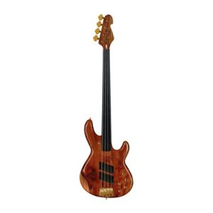 Is Sandberg Panther 4 Walnut fretless a good match for you?