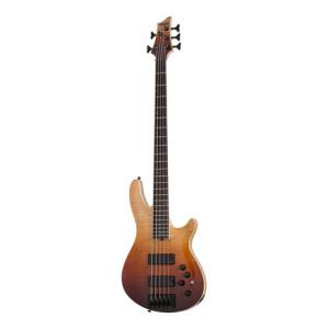 Is Schecter SLS Elite - 5 ANQFB a good match for you?