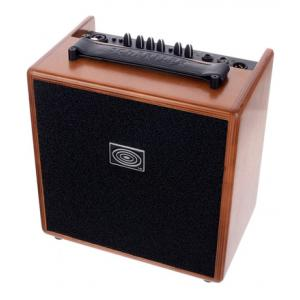 Is Schertler Giulia Wood Amp a good match for you?