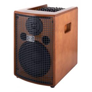 Is Schertler Jam 150 Wood the right music gear for you? Find out!