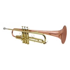 """Take the """"IS IT GOOD FOR ME"""" test for """"Schilke HC2 L Bb-Trumpet"""", read the reviews and join the community!"""