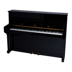 "Take the ""IS IT GOOD FOR ME"" test for ""Schimmel Piano, used, black"", read the reviews and join the community!"