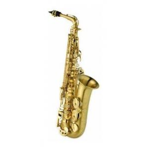 Is Selmer SE-A2M Matt SA80 II Alto the right music gear for you? Find out!
