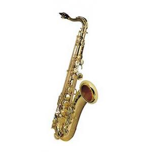 Is Selmer Tenor Serie III SE-T3L B-Stock a good match for you?