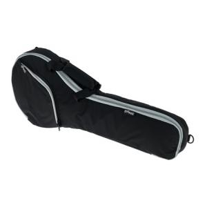 Is Stagg MA10 Mandolin Bag BK a good match for you?