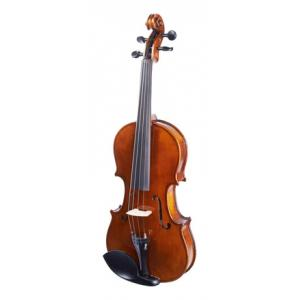 Is Stagg VN-4/4 HG Violin Set B-Stock a good match for you?