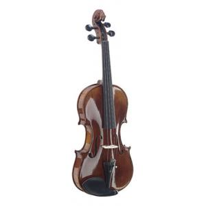 Is Stagg VN-4/4 XHG Violin a good match for you?