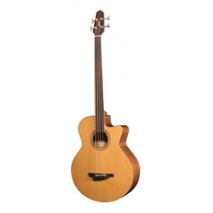 Is Stanford Big-Sur 4 fretless a good match for you?