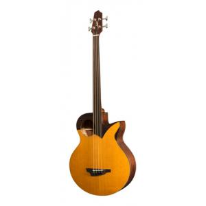 Is Stanford Robot 4 fretless a good match for you?
